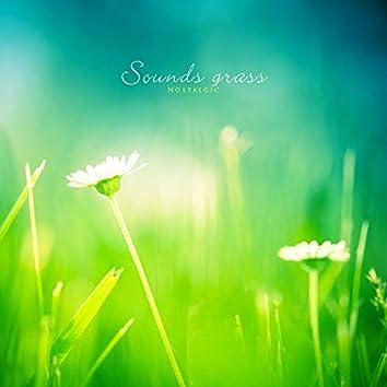 Grassy sound