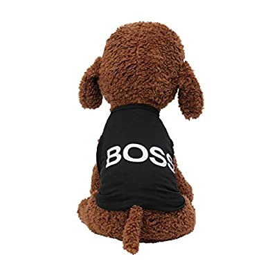 Abaimao 2019 Pet Clothing,Fashion Text Pattern Pet Vest Summer Breathable Comfortable Cat Dog Clothing,Dogs Clothes Cute Pet Clothing Warm Dog Jumpers Cat Clothe clothes (Black,S)
