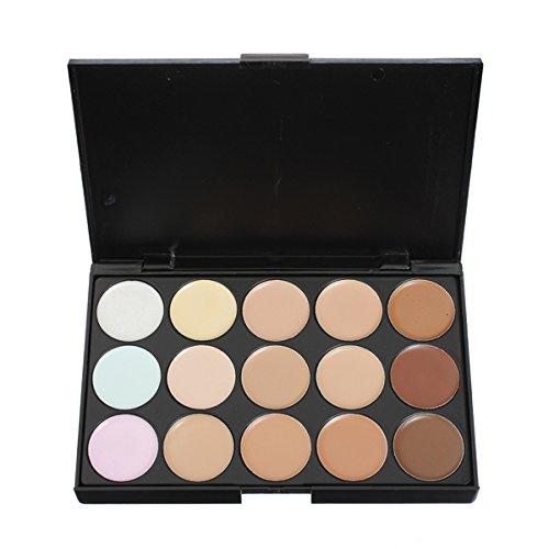Bluelover 15 Farben Flawless Makeup Concealer Foundation Palette Set