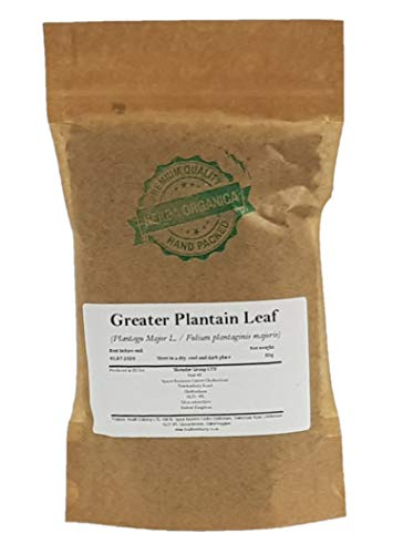 Breitwegerich Blatt / Plantago Major L / Greater Plantain Leaf # Herba Organica # Große Wegerich, Breitblättriger Wegerich (50g)