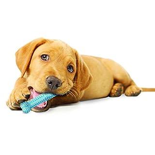 Nylabone جرو مضغ الكلب لعبة تشيو تشيو للبيع