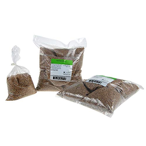 """Price comparison product image Certified Organic Hard Red Wheat Sprouting Seed: 10 Pre-Measured Bags for 10""""x20"""" Trays (Approx 10 Lb) For Growing Wheatgrass to Juice,  Grind for Flour & Bread"""