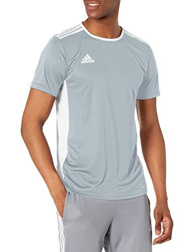 adidas Entrada 18 Jersey de Manga Corta para Hombre, Camiseta Entrada 18, Hombre, Color Gris Claro/Blanco, tamaño Small