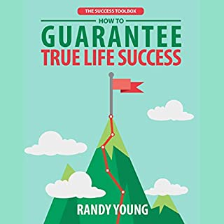 The Success Toolbox audiobook cover art