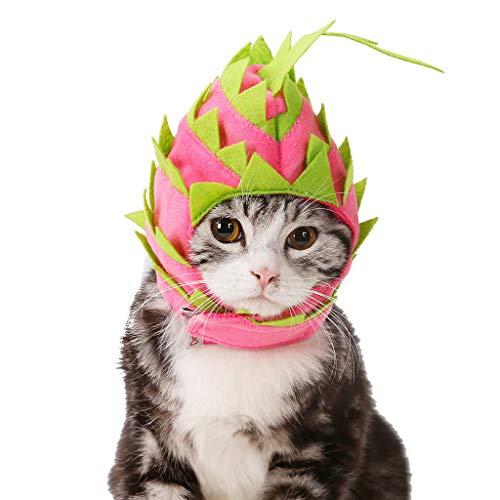 Haustier Hunde Klamotten Hund Katze Pitaya Fruit Design Haustier Hut Hund Katze Party Urlaub Kostüme