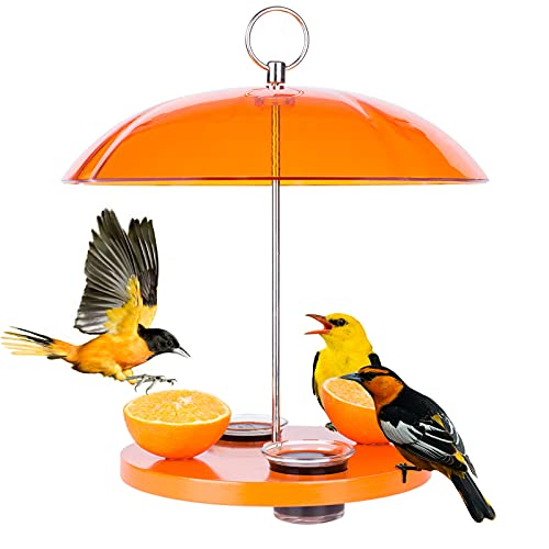 Kingsyard Oriole Bird Feeder for Outside with Big Dome Orange Fruit, Jelly, Mealworm,Nectar