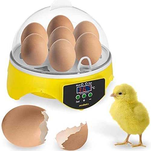 Mini 7 Incubadora de huevos, control de temperatura pequeño, incubadora digital automática de huevos, aves de corral para pollos, pato, pájaros, codorniz, cacatúa, periquito, uso familiar