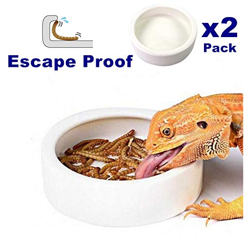 Reptile Food Water Bowl - 2 Pcs Worm Dish Small (2.75in) Lizard Gecko Ceramic Pet Bowls, Mealworms Bowl for Bearded Dragon Chameleon Hermit Crab Dubia Reptile Cricket Anti-Escape Mini Reptile Feeder