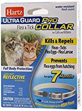 Hartz UltraGuard Pro Reflective Flea & Tick Collar for Cats and Kittens, 7 Month Protection