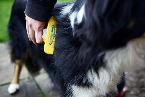 FURminator deShedding Hunde-Pflegewerkzeug zur Fellpflege – Hundebürste in Größe L zur gründlichen Entfernung von Unterwolle und losen Haaren – für langhaarige Hunde - 4