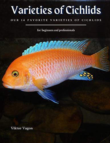 Varieties of Cichlids: OUR 14 FAVORITE VARIETIES OF CICHLIDS