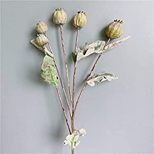 TRRT Fake Plants Dried-Looking Poppy Fruit Branch, with Dead Leaves Artificial Flowers for Home Garden Decor Fake Plants Fake Flower