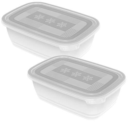 Rotho Freeze 2er-Set Gefrierdosen 1,9l mit Deckel, Kunststoff (PP) BPA-frei, transparent, 2 x 1,9l (23,5 x 16,0 x 10,0 cm)
