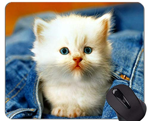 Mauspad mit genähtem Rand, Jeans Kätzchen Tierkatze weiß Home Office Computer Zubehör Mousepads