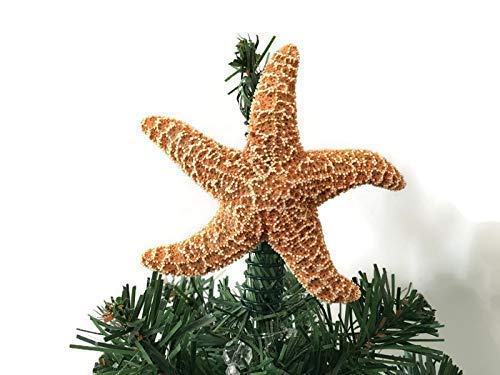Beach Decor Nautical Starfish Tree Topper 11-12 Starfish Tree Topper Starfish Christmas Tree Topper Beach Christmas Decor