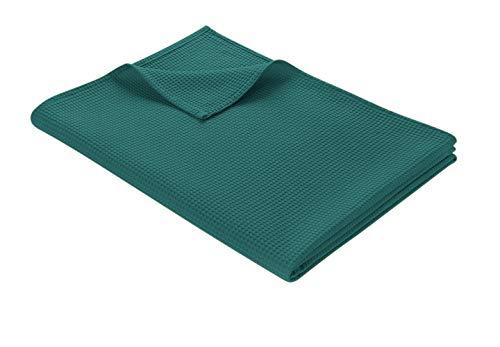 WOHNWOHL Tagesdecke 150 x 200 cm • Waffelpique leichte Sommerdecke aus 100% Baumwolle • Luftige Sofa-Decke vielseitig einsetzbar • Pflegeleichte Wohndecke • Baumwolldecke Farbe: Petrol