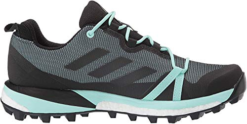 adidas outdoor Women's Terrex Skychaser Lt GTX Walking Shoe