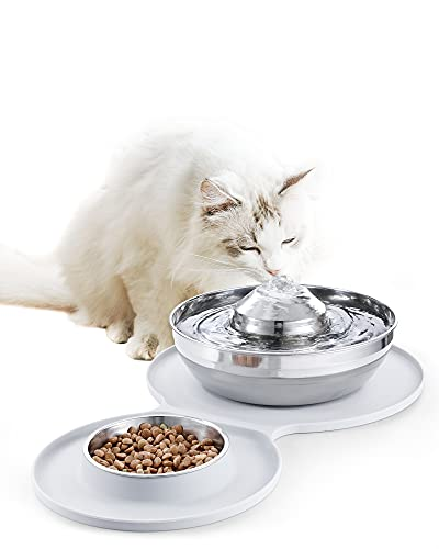 Stainless Steel Cat Water Fountain & Dog Bowl 2-in-1 Set,ECCOMAS 2L/67oz Pet Water Fountain &248ml Cat Food Bowl,Dishwasher Safe Design,Cat Feeding &Watering Supplies with 3 Filters& Mat for Cats Dogs