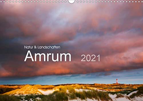Natur und Landschaften. Amrum 2021 (Wandkalender 2021 DIN A3 quer)
