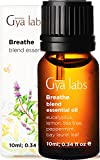 Gya Labs Breathe Essential Oil Blend - Peppermint and Eucalyptus for Sinus Relief and Nasal Congestion Relief - 100 Pure Therapeutic Grade Breathe Easy Essential Oil Blends for Aromatherapy - 10 ml
