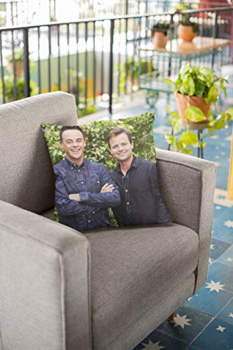 VinMea Ant & DEC Cushion Pillow, Ant and DEC Decorative Pillow Cover For Bedroom Sofa Cars, Ant and DEC Poster Art Print