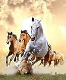 Pintura de diamante Taladro completo Nuevo D3154 una manada de caballos Venta al por mayor DIY decor del hogar Rhinestone Pegatinas de pared Bordado Costura-Taladro redondo,40X55cm