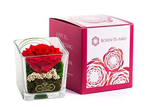 Rosen-Te-Amo, Premium duftende konservierte ewige Rose in Glas-Vase handgefertigt mit echtem Bindegrün in feiner Geschenk-Box (neu). Infinity Rosen: Geschenke für Frauen & Deko Wohn-Zimmer
