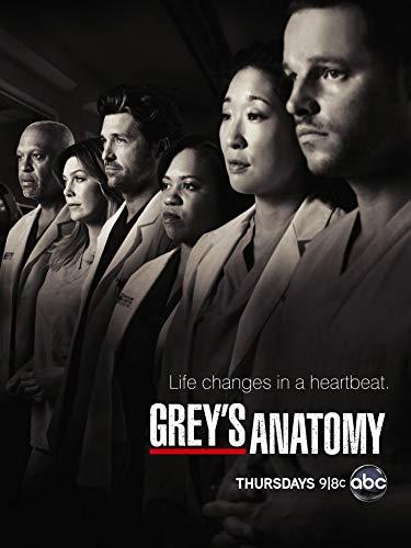 Greys Anatomy Poster auf Seide/Siebdrucke/Tapete/Wanddekoration 111051284
