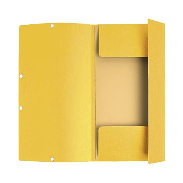 Exacompta 55509SE - Pack de 10 carpetas con goma, A4, color amarillo : Tamaño: 24X 32 Material: Laminado tarjetas Tipo de cubierta: cartón