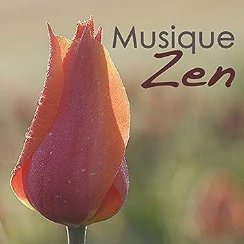 Musique Zen: Coffret bien-être de musique relaxante piano et new age pour détente, méditation et massage