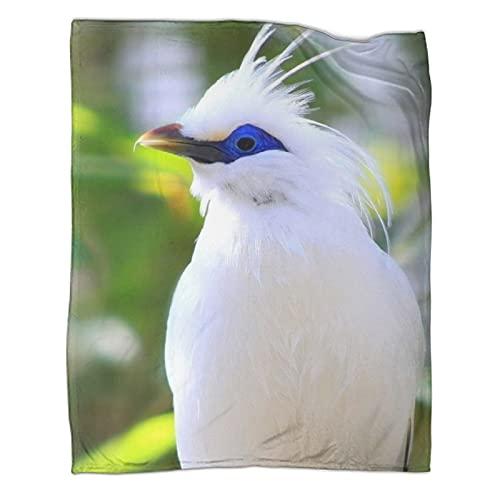 Bali Starling - Manta para adultos y adolescentes, 130 x 180 cm, forro polar de franela suave para sofá/sillas/sofá