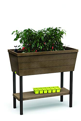 Keter - Mini huerto casa Urban Bloomer base cultivo