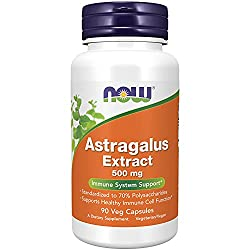 Astragalus Extract 500 mg