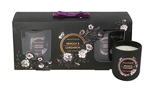 Lifestyle & More Duftkerzen Set Noir 3 Stück | Mimosa & Cardamon | Höhe 6,5 cm, Ø 5,5 cm | Wax Gewicht 3 x 64 gr | Brenndauer 14-17 Stunden | Umweltfreundlich & 100% Sojawachs