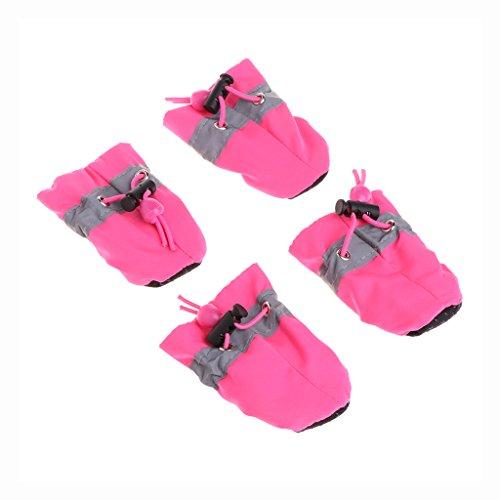 Bowls Shoes Marca QIANGU