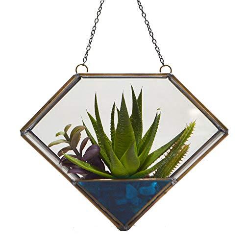 Geometrische glazen container moderne artistieke muur opknoping Terrarium Succulente luchtplanten Houder Planter voor vetplanten, luchtplanten, Varens, Catci, kleine planten Geometrische glazen container Gass Bloempot