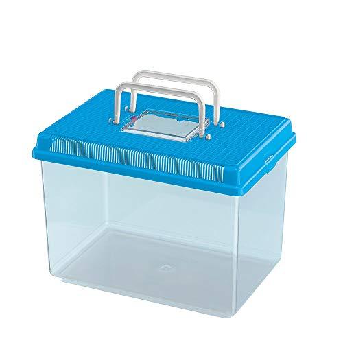Ferplast Aquarium aus Kunststoff für Fische GEO Large Tank 6 L Behälter für Kleintiere Aquarium Terrarium Insekten Schildkröten, Robuster Kunststoff, 30 x 20 x 20,3 cm, blau