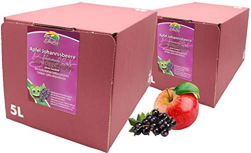 Bleichhof Apfel-Johannisbeer Direktsaft -- 100% Direktsaft, vegan, Bag-in-Box mit Zapfsystem (2x 5l Saftbox)