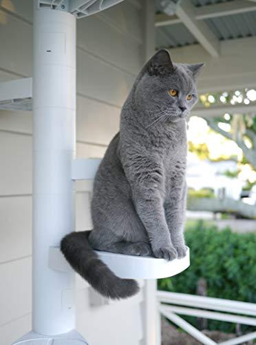 MONKEE TREE - Modular Cat Ladder for inside or outside 12 Trunk Starter Pack