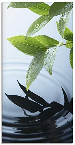 Artland Glasbilder Wandbild Glas Bild einteilig 30x60 cm Hochformat Natur See Pflanzen Wasser Baum Blätter Wassertropfen T5VV