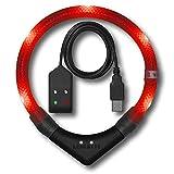 LEUCHTIE® Leuchthalsband Pro Easy Charge rot Größe 42,5 I LED Halsband für Hunde I USB aufladbar...