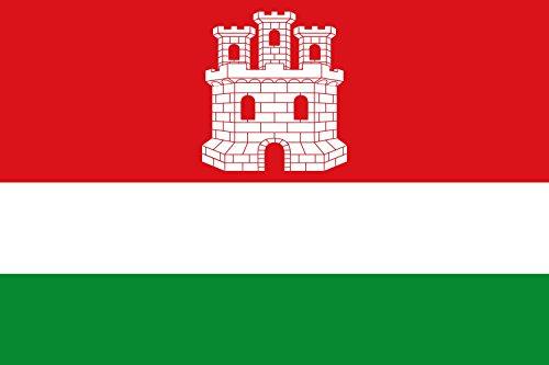 magFlags Bandera Large del municipio de Castrotierra de Valmadrigal Castilla y León | Bandera Paisaje | 1.35m² | 90x150cm