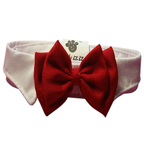 Lorjoy Adorabile gatto del cane Bowknot Bow,Fashion Bow Tie,Dog del cucciolo dell'animale domestico gattino giocattolo Papillon cravatta Abbigliamento collare