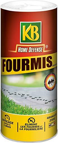 commercial petit anti fourmis puissant