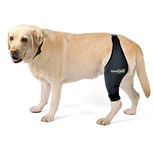 Ortocanis Original Knieorthese für Hunde - Unterstützt das Kniegelenk bei Arthrose, Kreuzbandriss, Patellaluxation und Verletzungen an Meniskus und Sehnen - Linkes Bein - Größe XXS