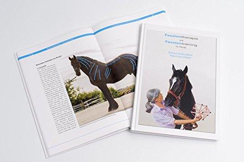 Faszientherapie und Faszientraining für Pferde