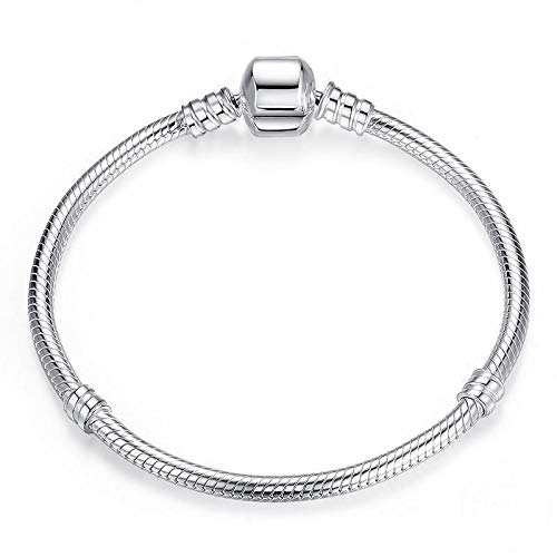 Sterling Silver Plated Charm Bracelet - Authentic S925 Sterling Silver Plated Collection Charm Bracelets & Gift Pouch (17)