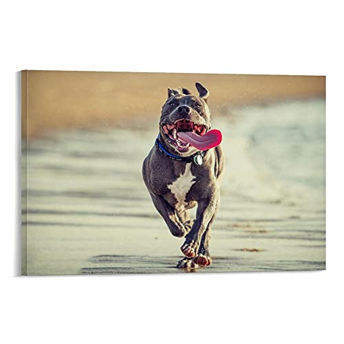 DSADGHHF Pitbull - Póster decorativo para pared, diseño de perro, 60 x 90 cm