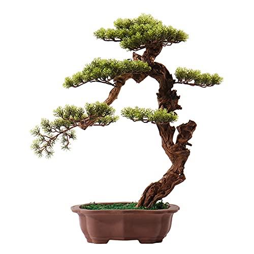 dxjsf Künstlicher Bonsai-Baum...