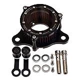 WOOSTAR Filtre à Air de Moto Fait de Métal CNC Remplacement pour Harley Davidson Sportster XL883 XL1200 2004-2015 Purificateur D'air